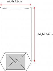 - Medium Kraft Window Bag (1)